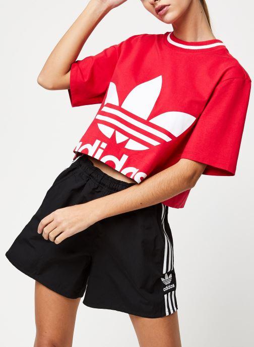 Vêtements adidas originals Cropped Tee Rose vue détail/paire