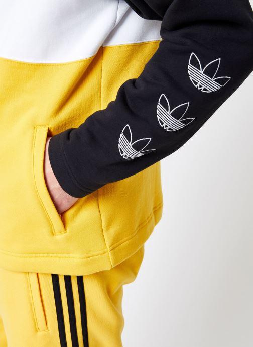Tøj adidas originals Full Zip Hoody Multi se forfra