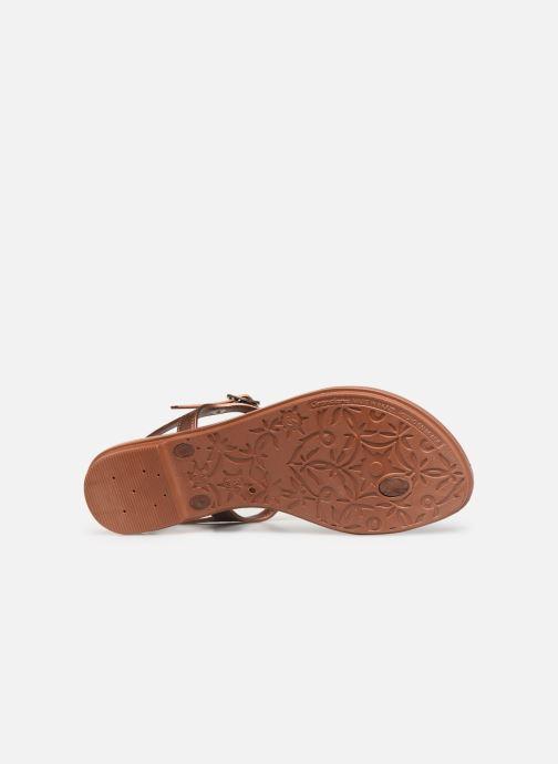 Sandalias Grendha Glamorous Sandal Oro y bronce vista de arriba