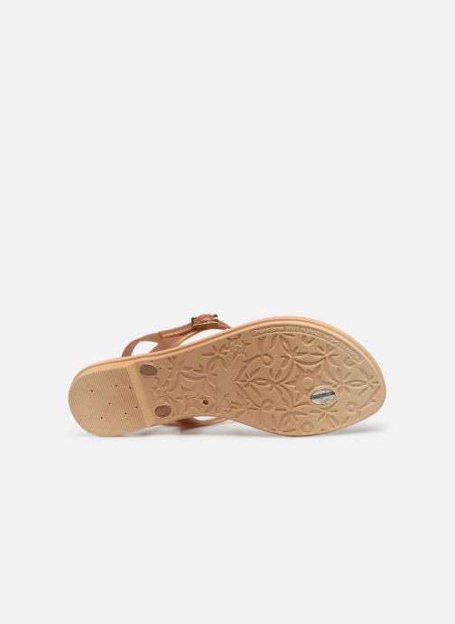 Sandales et nu-pieds Grendha Chains Sandal Or et bronze vue haut