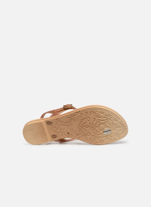 Sandali e scarpe aperte Grendha Chains Sandal Oro e bronzo immagine dall'alto