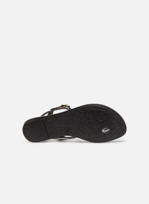 Sandali e scarpe aperte Grendha Chains Sandal Nero immagine dall'alto