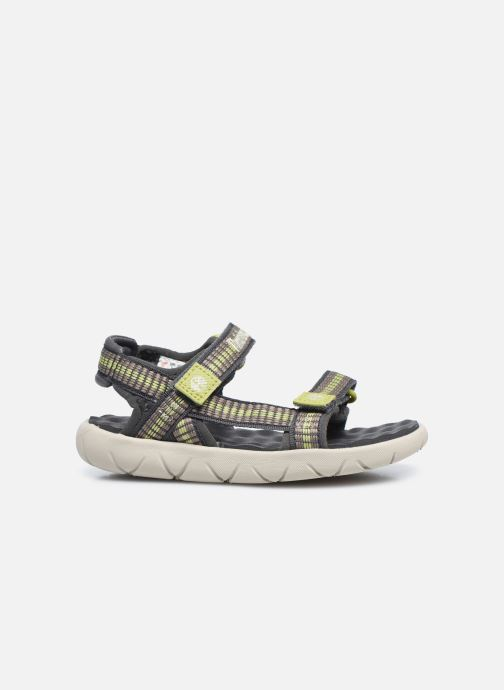 Sandales et nu-pieds Timberland Perkins Row Webbing Sndl Vert vue derrière