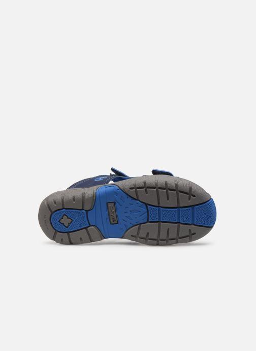 Sandales et nu-pieds Timberland Moss Jump 2 Strap Sandal Bleu vue haut
