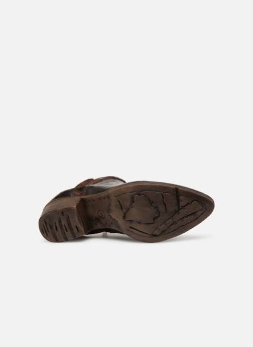 Ankle boots Khrio Polacco 2402 Brown view from above