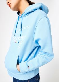 Kleding Accessoires TJW TOMMY SIGNATURE HOODIE