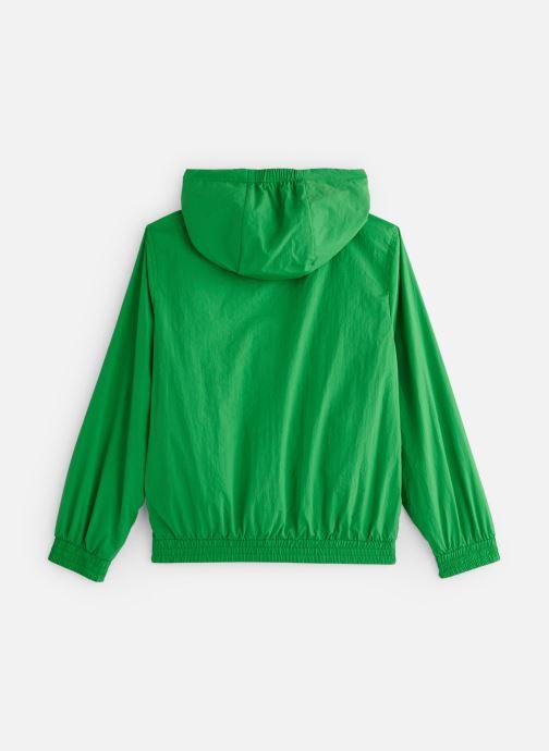 Kleding Calvin Klein IB0IB00093 Groen onder