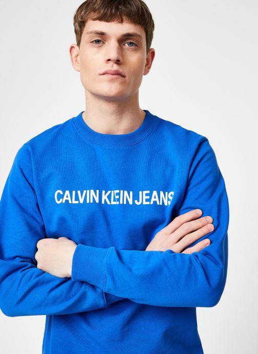 Vêtements Calvin Klein Jeans INSTITUTIONAL LOGO REG CREW NECK Bleu vue détail/paire