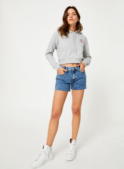 Vêtements Calvin Klein Jeans Monogram Embroidery Hoodie Gris vue bas / vue portée sac