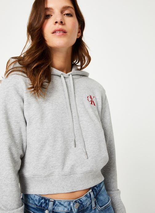 Vêtements Calvin Klein Jeans Monogram Embroidery Hoodie Gris vue détail/paire