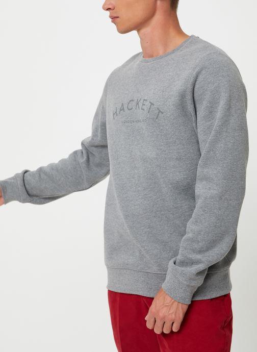 Vêtements Hackett London CLASC LOGO CREW Gris vue détail/paire
