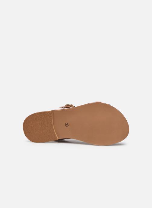 Sandales et nu-pieds Cendry Achille Rose vue haut