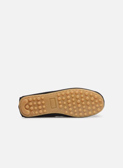 Scarpe con lacci Cendry Alexandre Azzurro immagine dall'alto
