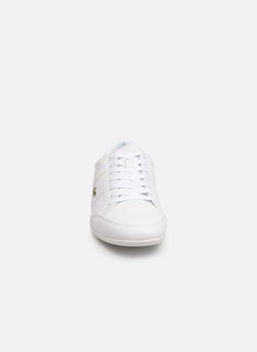 Baskets Lacoste Chaymon 219 1 Cma Blanc vue portées chaussures
