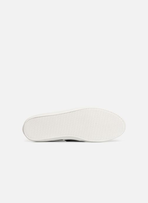 Trainers Lacoste Marice 219 1 Cma Blue view from above