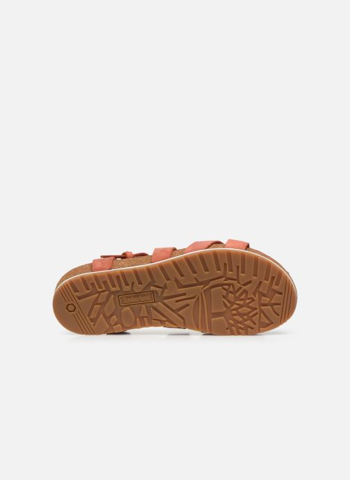Sandals Timberland Malibu Waves Ankle Orange view from above