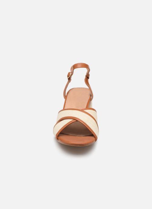 Sandales et nu-pieds Vanessa Wu SD1962 Beige vue portées chaussures