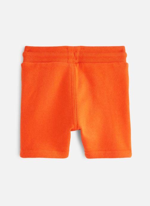 Vêtements Timberland T04922 Orange vue bas / vue portée sac