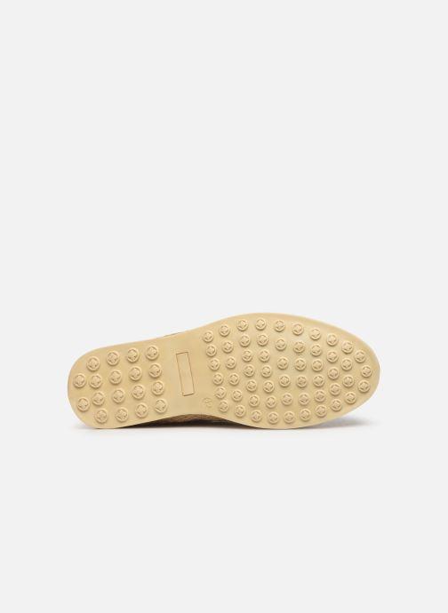 Chaussures à lacets P-L-D-M By Palladium Epidemic Beige vue haut