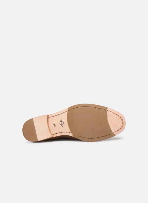 Chaussures à lacets P-L-D-M By Palladium Paroxysme Sud Marron vue haut