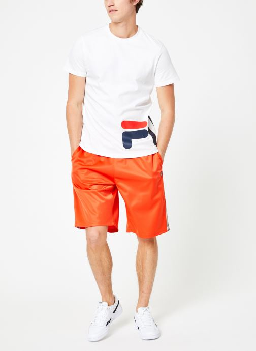 Vêtements FILA Josh Long Shorts Multicolore vue bas / vue portée sac