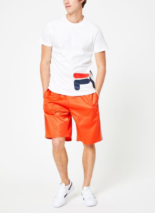 Vêtements FILA Josh Long Shorts Multicolore vue bas / vue portée sac