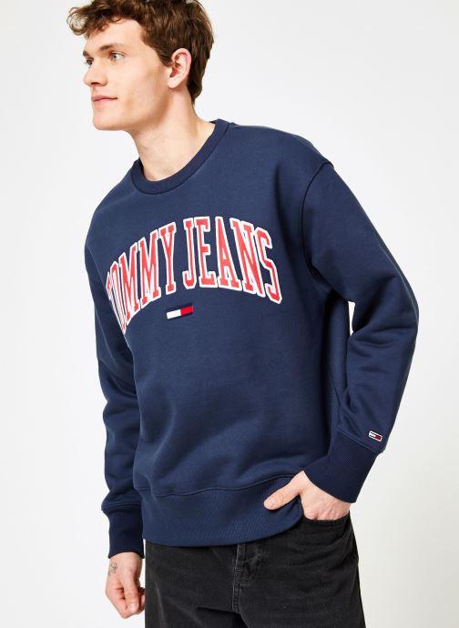 Vêtements Tommy Jeans TJM CLEAN COLLEGIATE CREW Bleu vue détail/paire