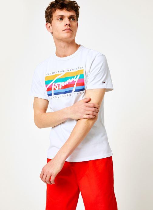 Vêtements Tommy Jeans TJM TOMMY RAINBOW BOX TEE Blanc vue détail/paire