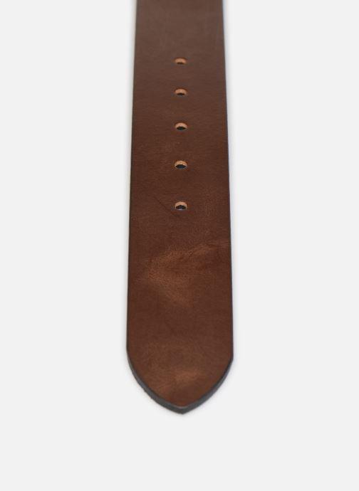 Cinturones Levi's Reversible Core Marrón vista de frente