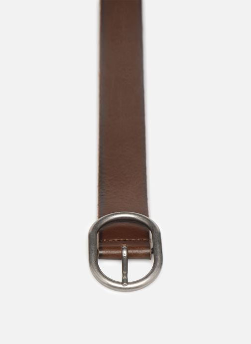 Belts Levi's Calneva Brown model view