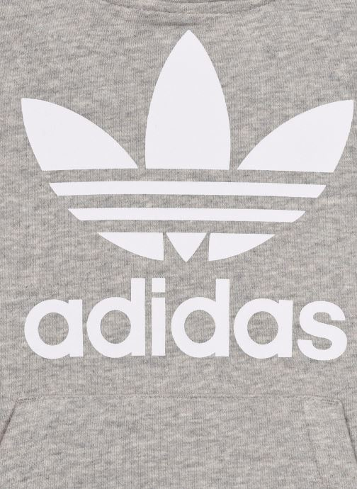 Vêtements adidas originals Trefoil Hoodie J Gris vue face