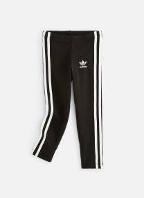 3Stripes Leggin K