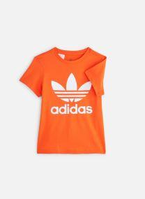 adidas originals Trefoil Tee J (Orange) Vêtements chez