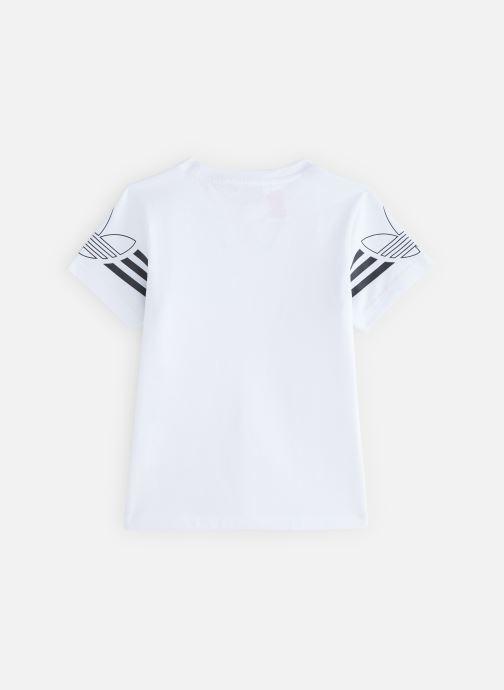 Kläder Adidas Originals Outline Tee J Vit bild från under