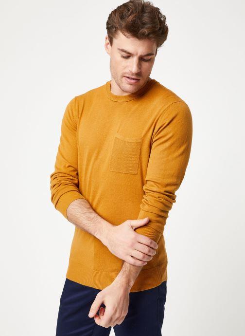 Vêtements Scotch & Soda Classic crewneck pull in soft cotton quality Marron vue détail/paire