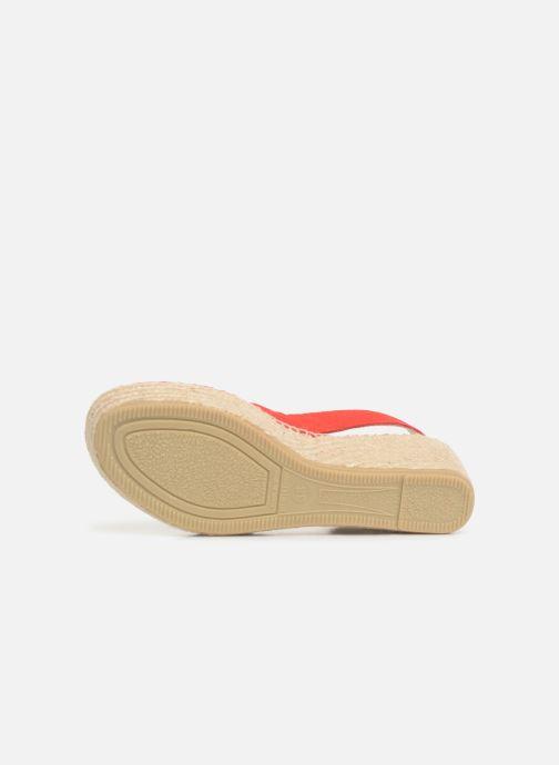Chez 371527 Scarpe rosso Bear Di S Corda Shoe The Alice zwBxqWP8