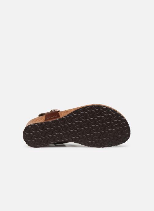 Sandali e scarpe aperte Papillio Ashley Cuir W Marrone immagine dall'alto
