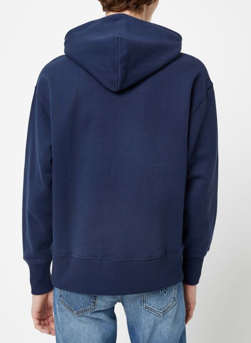 Vêtements Tommy Jeans TJM TOMMY BADGE HOODIE Bleu vue portées chaussures