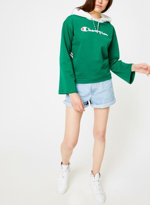 Vêtements Champion Champion Large Script Logo Bi-Colour Hooded Sweatshirt Vert vue bas / vue portée sac