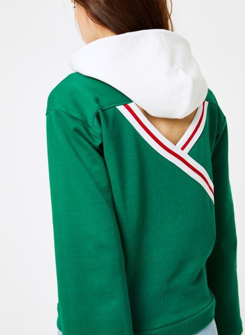 Vêtements Champion Champion Large Script Logo Bi-Colour Hooded Sweatshirt Vert vue face