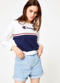 Abbigliamento Accessori Champion Large Script Logo Colour Block Crewneck Cropped Sweatshirt