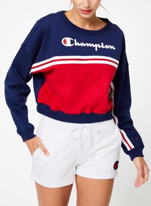 Tøj Champion Champion Large Script Logo Colour Block Crewneck Cropped Sweatshirt Multi Se fra højre