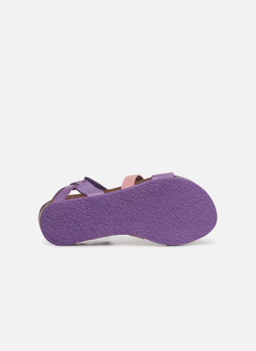Sandales et nu-pieds Kickers Picnic V Violet vue haut