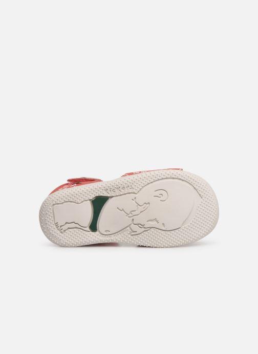 Sandales et nu-pieds Kickers Bazooka Rose vue haut