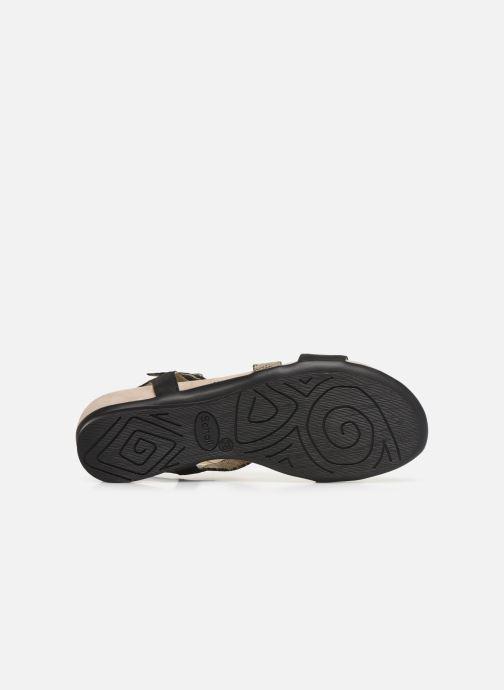 Sandales et nu-pieds Scholl Ambrette C Noir vue haut