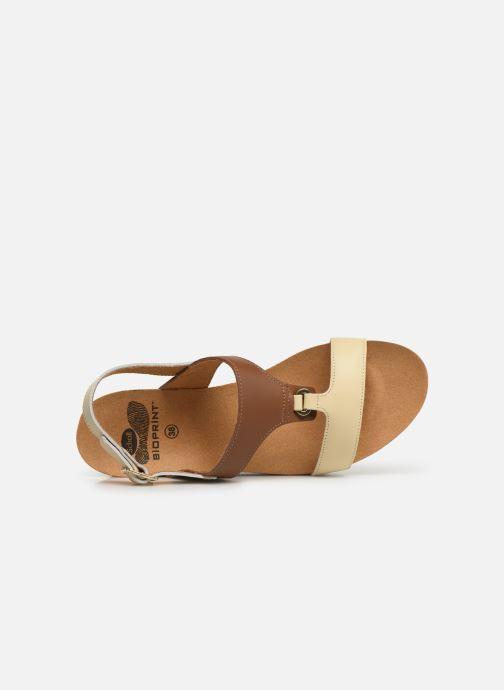Sandales et nu-pieds Scholl Annael C Marron vue gauche