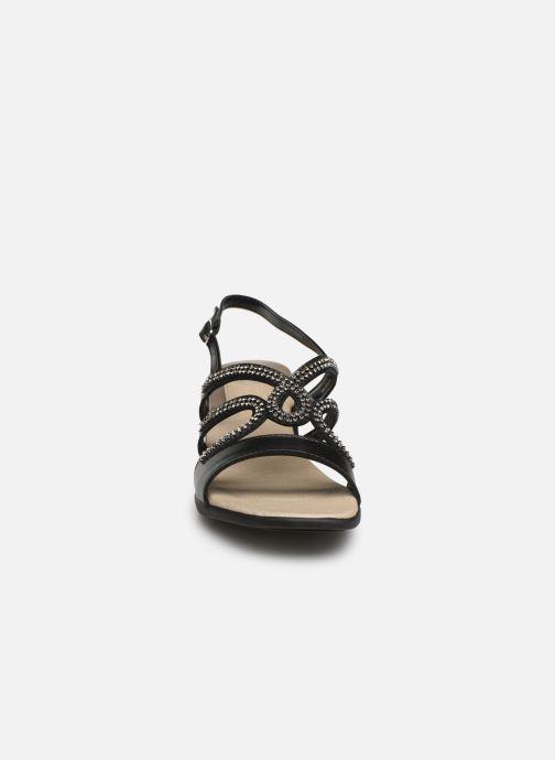 Sandales et nu-pieds Scholl Danae C Noir vue portées chaussures
