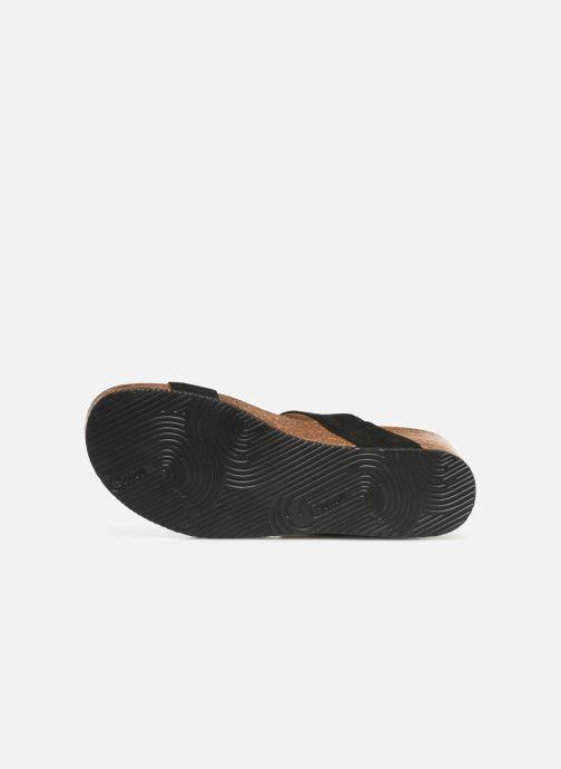 Sandales et nu-pieds Scholl Evelyne Sandal C Noir vue haut