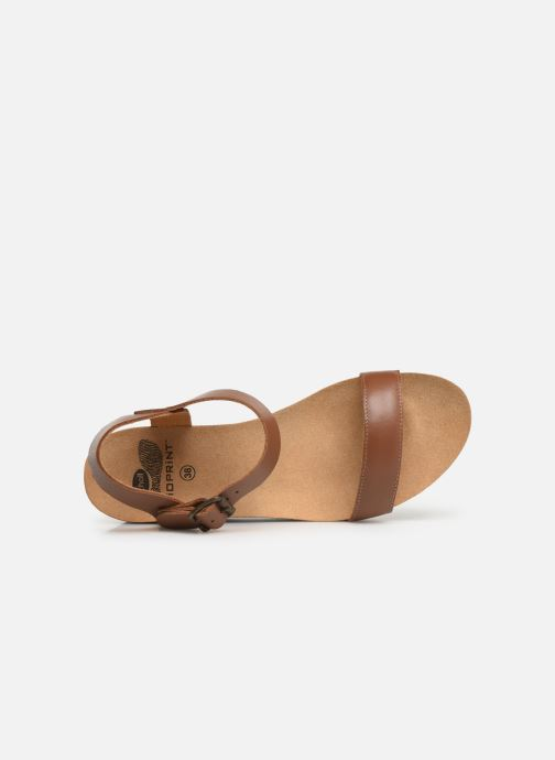Sandals Scholl Ninfea C Brown view from the left