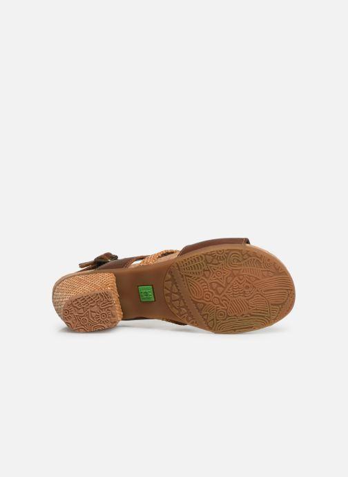 Sandali e scarpe aperte El Naturalista Mola N5031 Marrone immagine dall'alto